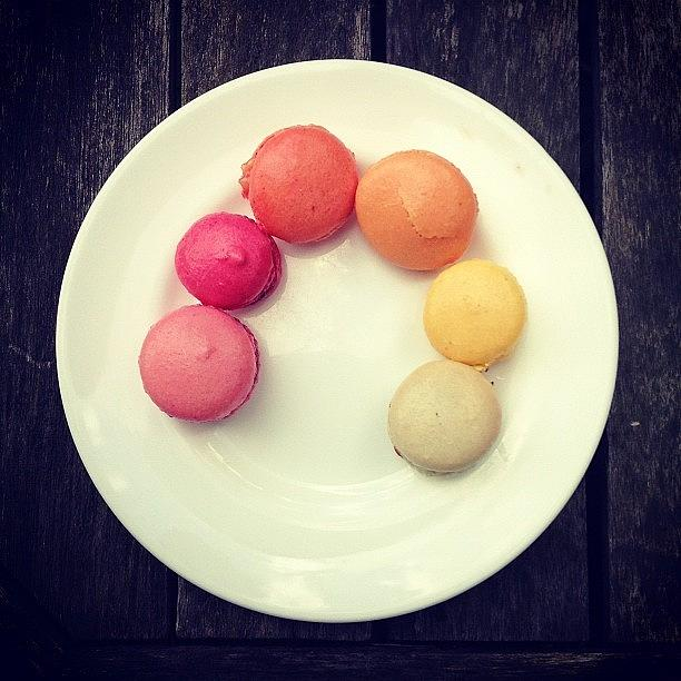 Macaroons Photograph - Macaroons by Nic Squirrell