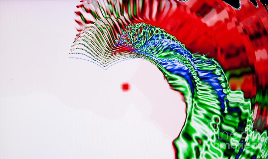 Abstract Photograph - Macaw by Tashia Peterman