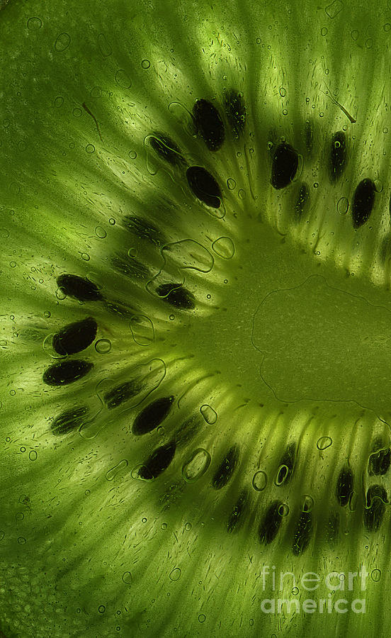 Kiwi Photograph - Macro Kiwi Slice by Janeen Wassink Searles