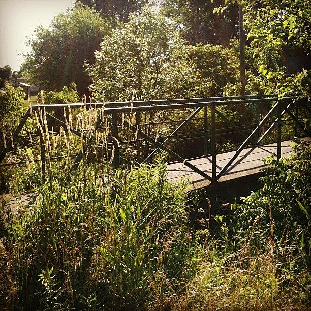 Photograph - Maddox Bridge by Jeff Guilkey