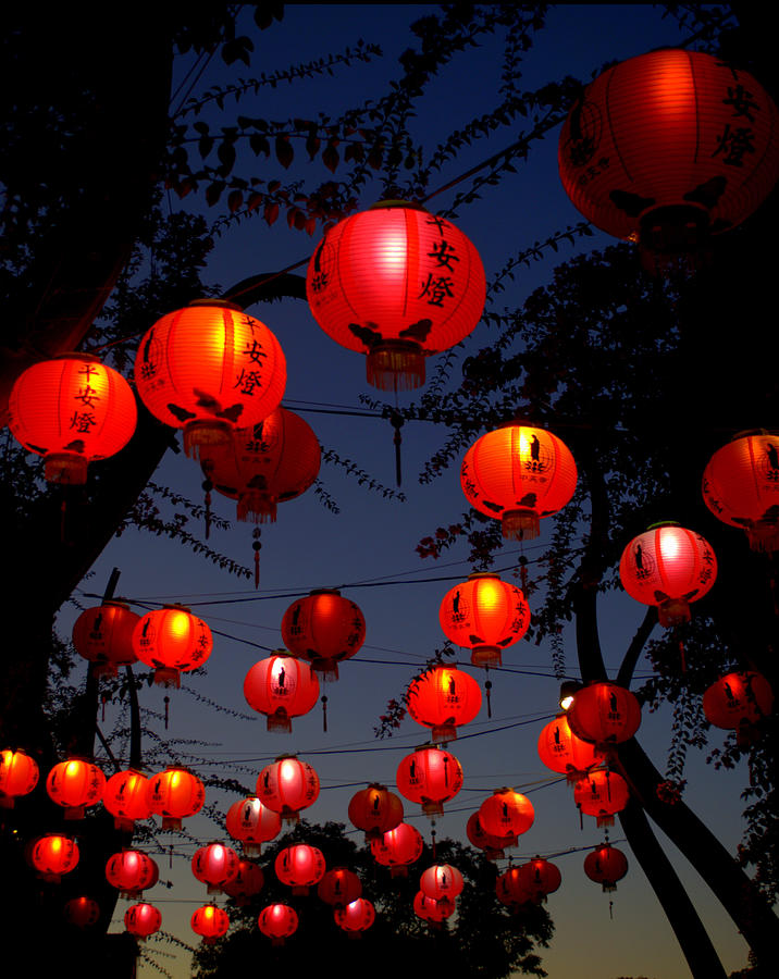 Magic Lanterns For Buddha Birthday Photograph by Nikki Yetman