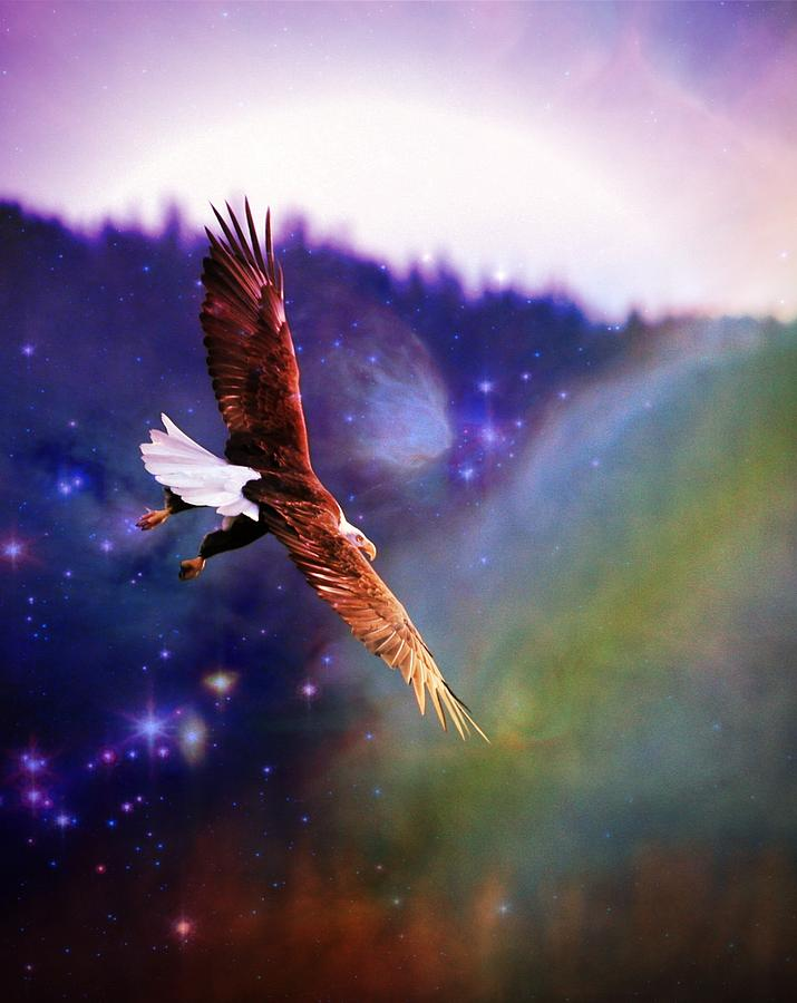 Bald Eagle Digital Art - Magical Moment 2 by Carrie OBrien Sibley