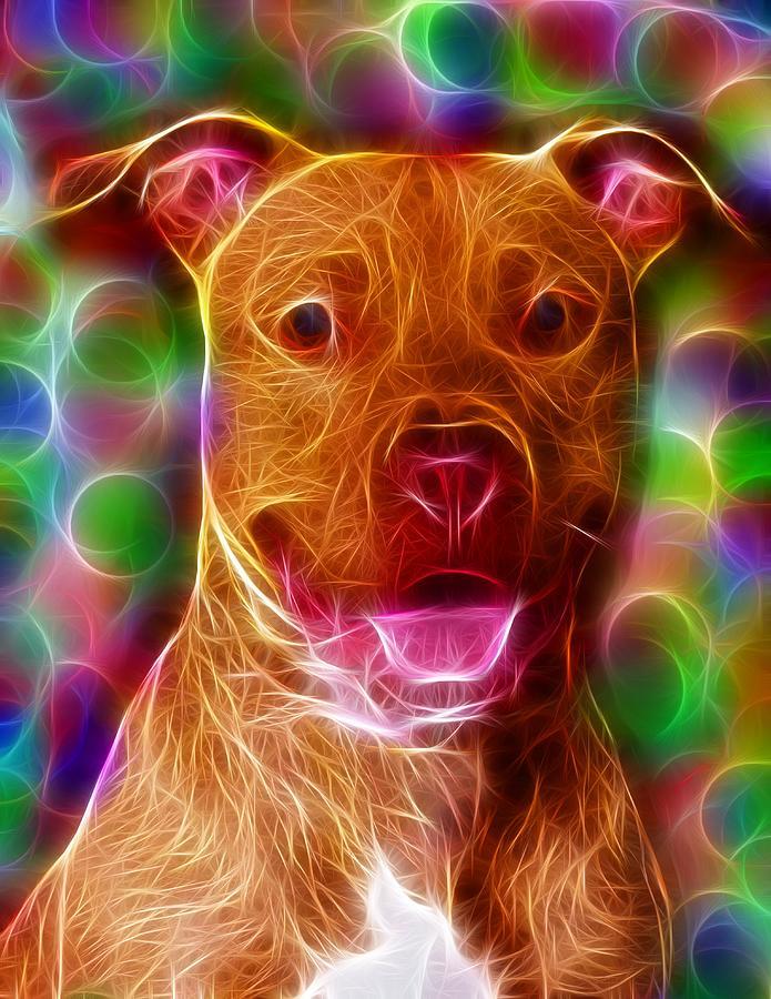 American Pit Bull Terrier Digital Art - Magical Pit Bull by Paul Van Scott