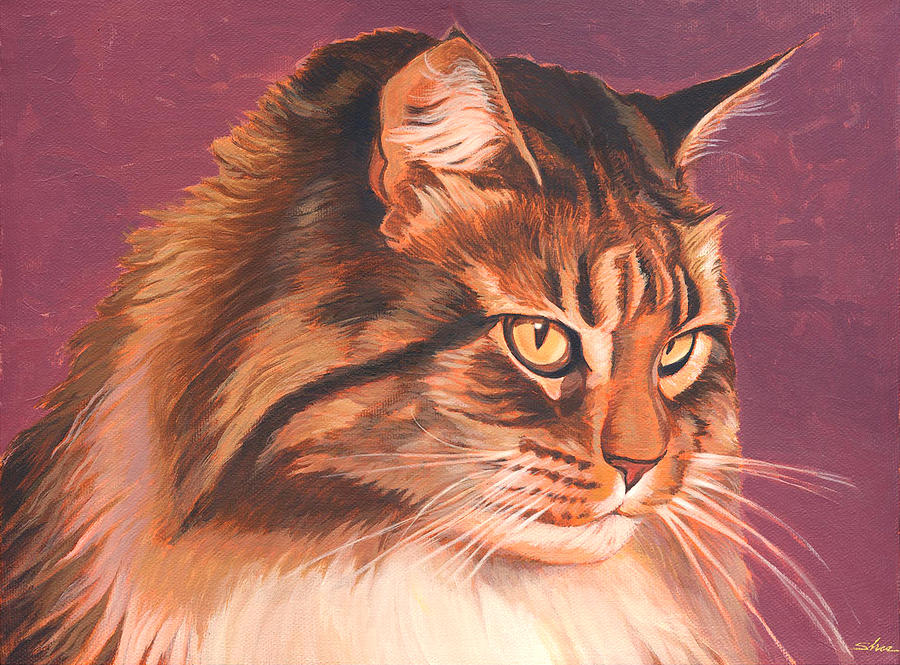 Cat Painting - Maine Coon Portrait by Shawn Shea