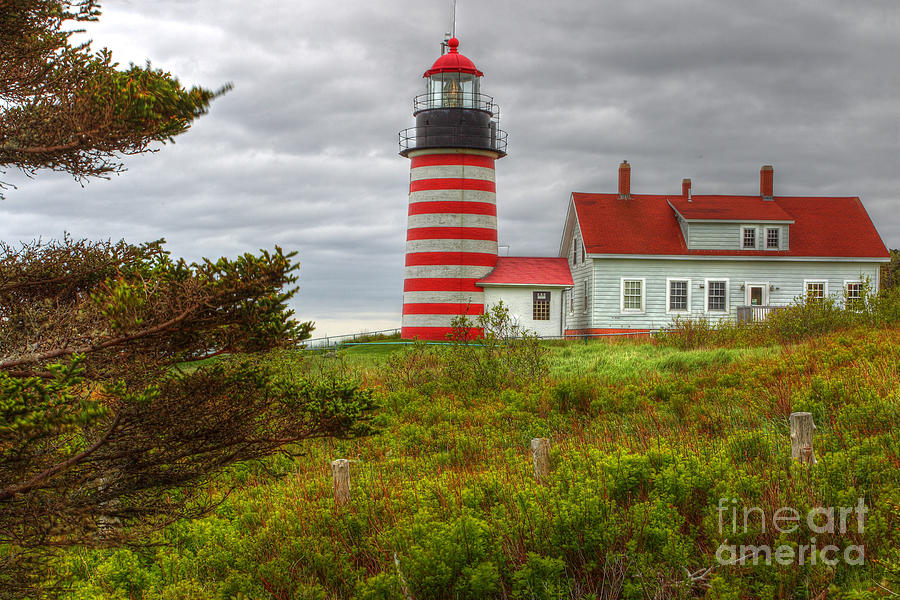 Lighthouse Photograph - Maine Lighthouse At Lubec. by Rick Mann