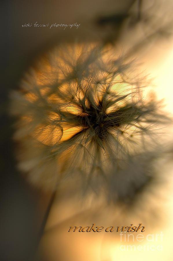 Anticipation Photograph - Make A Wish by Vicki Ferrari