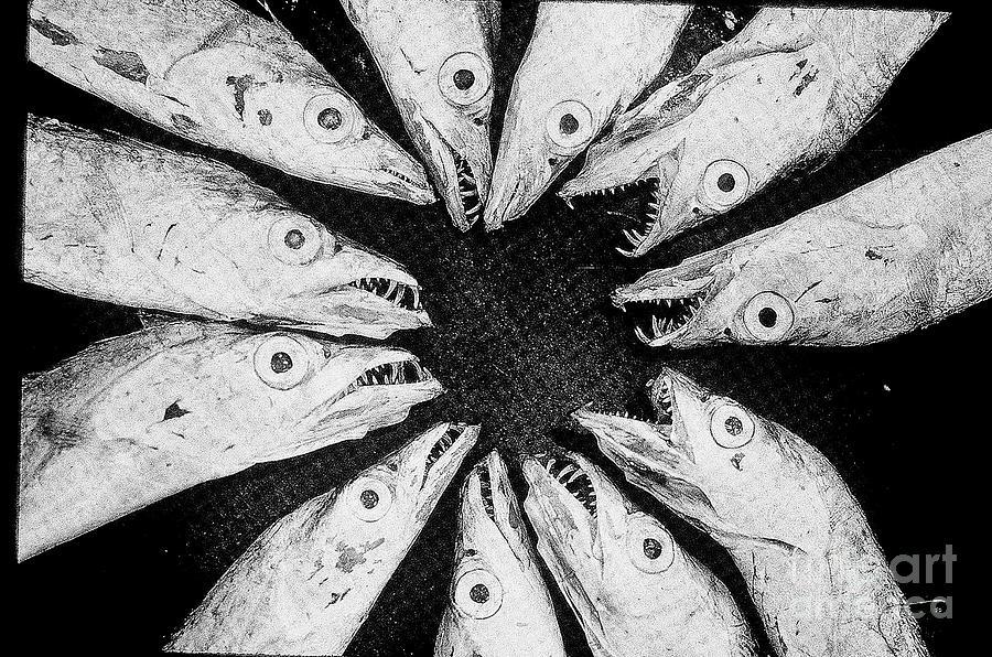 Fish Eyeballs Photograph - Malicious Gossip by Joe Jake Pratt