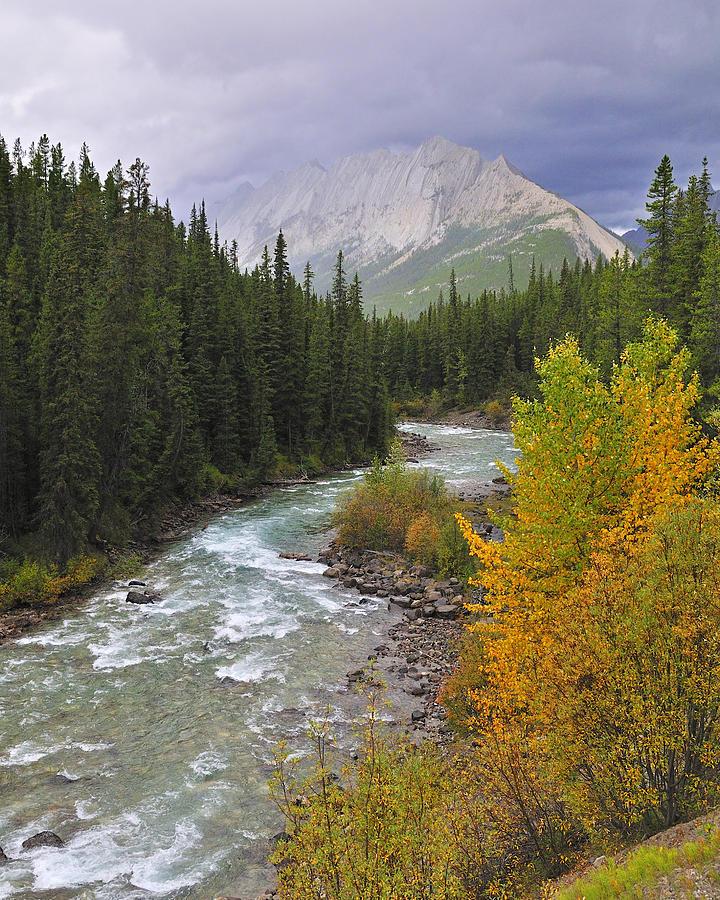 Jasper National Park Photograph - Maligne River by Tony Beck