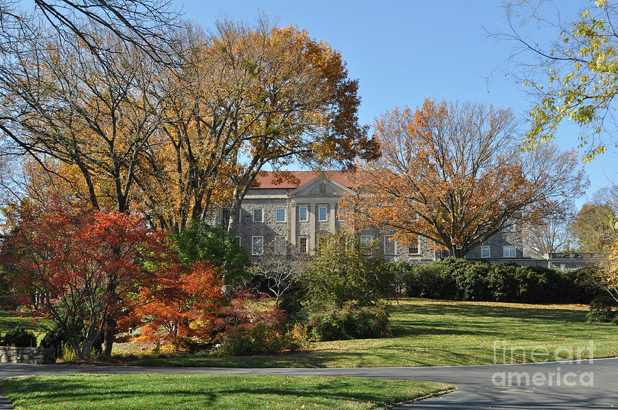 Cheekwood Gardens Photograph - Mansion In The Woods by Denise Ellis
