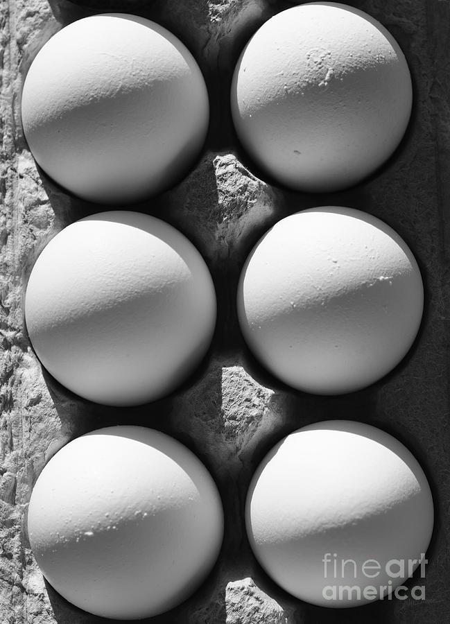 Eggs Photograph - Many Moons by Luke Moore