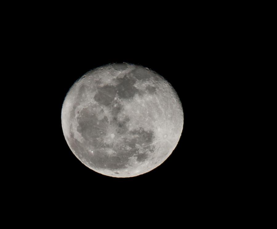 Moon Photograph - March Waning Moon by Lara Ellis
