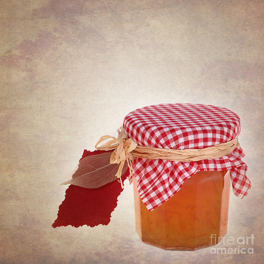 Background Photograph - Marmalade Gift Vintage by Jane Rix