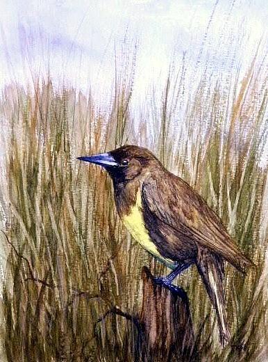 Marsh Painting - Marsh Mellow by Travis Kelley