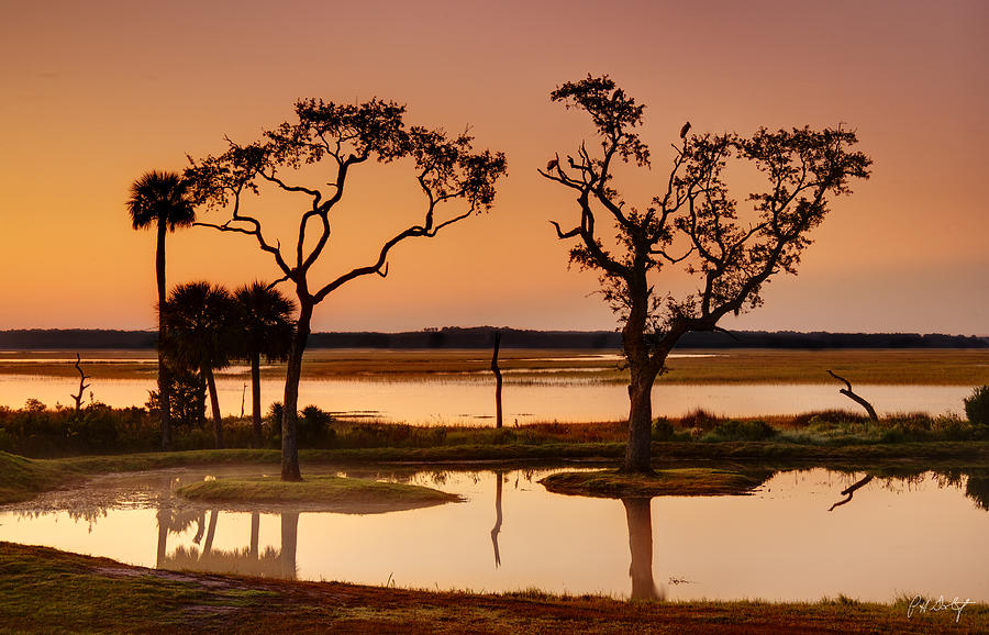 Beaufort County Photograph - Marsh Morning by Phill Doherty
