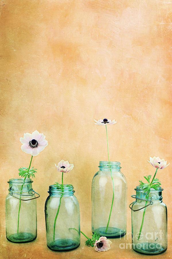 Flower Photograph - Mason Jars by Stephanie Frey