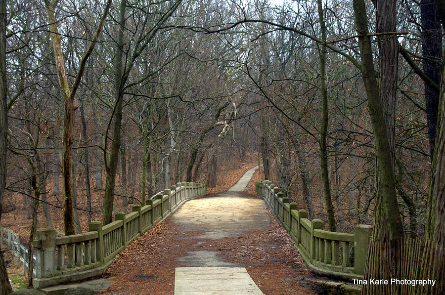 Illinois Photograph - Mattheson State Park by Tina Karle