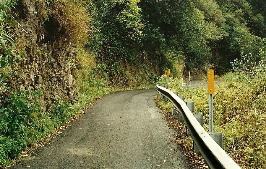 Maui Photograph - Maui Highway by Marilyn Wilson