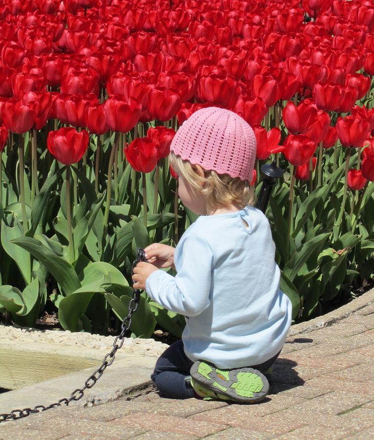 May Day May Day Photograph by Todd Sherlock