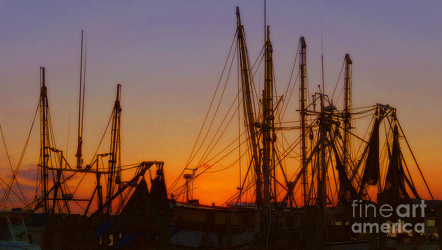 Boats Photograph - Mayport by Lydia Holly