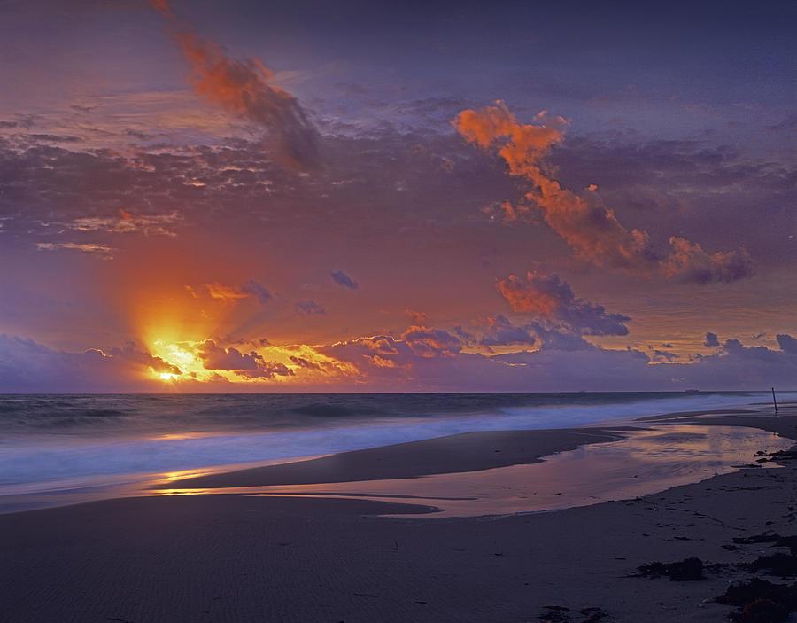 Mcarthur Beach At Sunrise Florida Photograph by Tim Fitzharris