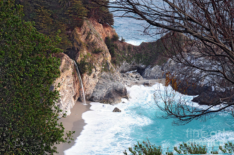 Photo Photograph - Mcway Falls In Spring by Tonia Noelle