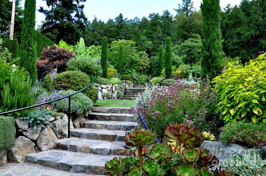 Mediterranean garden in butchart gardens photograph by for Mediterranean garden