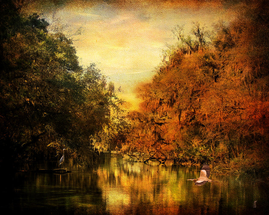 Autumn Photograph - Meeting Of The Seasons by Jai Johnson