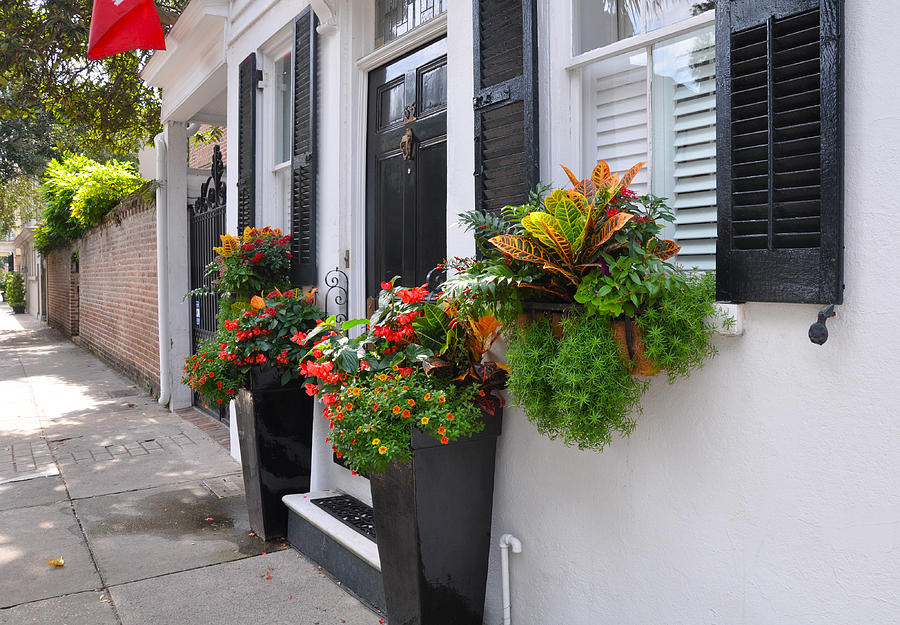 Meeting Street Window Box 2 Photograph by Lori Kesten
