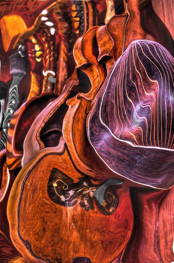 Mandolin Photograph - Melt-olins by Frank SantAgata