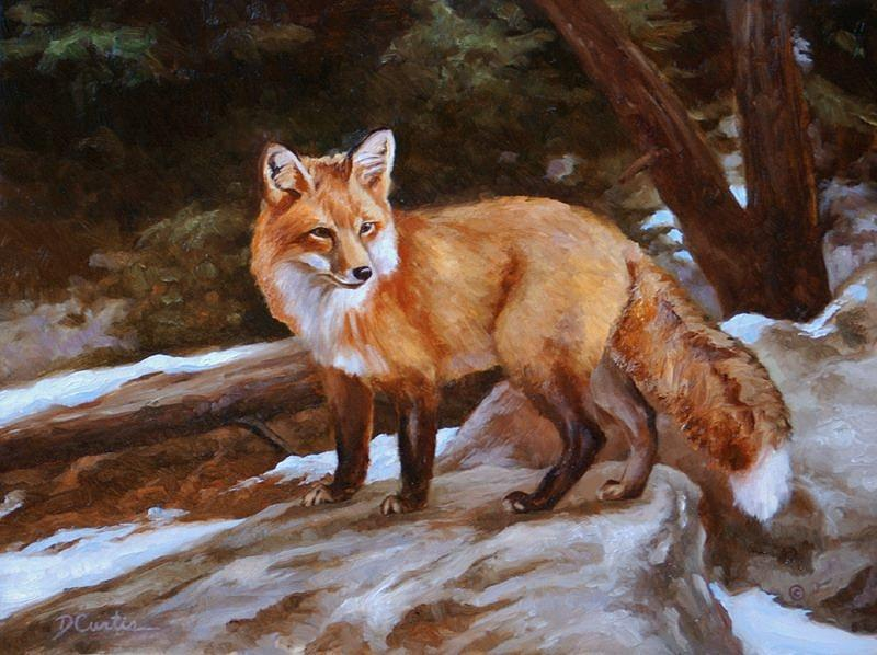 Wildlife Painting - Melting Snow by Dustin Curtis