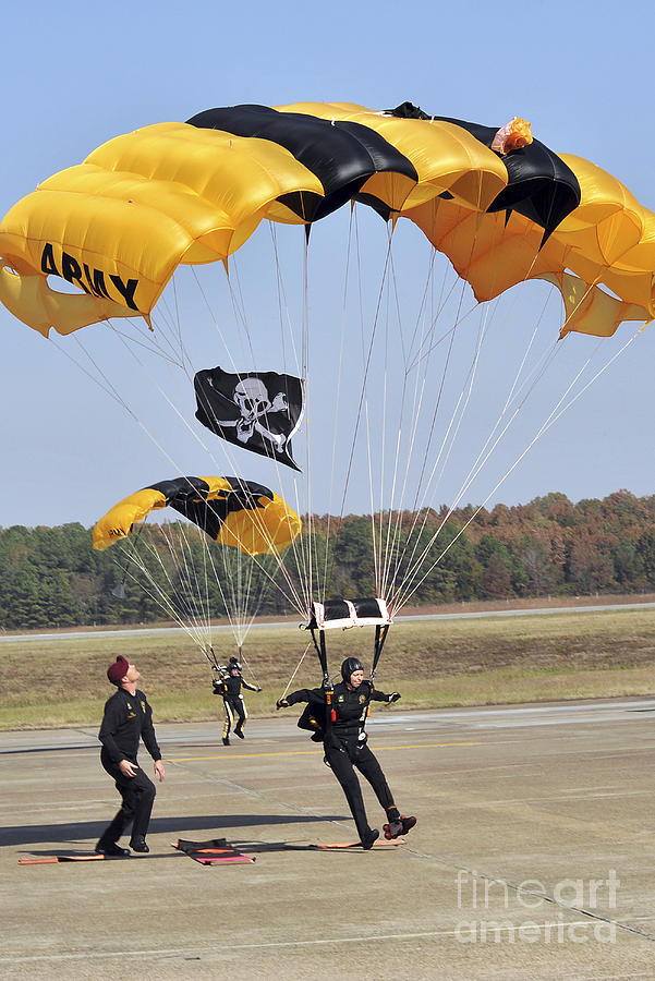 Military Photograph - Members Of The Golden Knights Parachute by Stocktrek Images