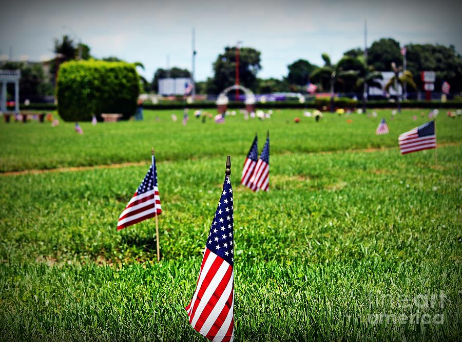 Memorial Day Flags Photograph by Ines Bolasini