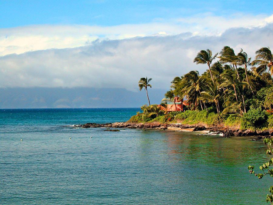 Maui Photograph - Memories Of Maui by Lynn Bauer