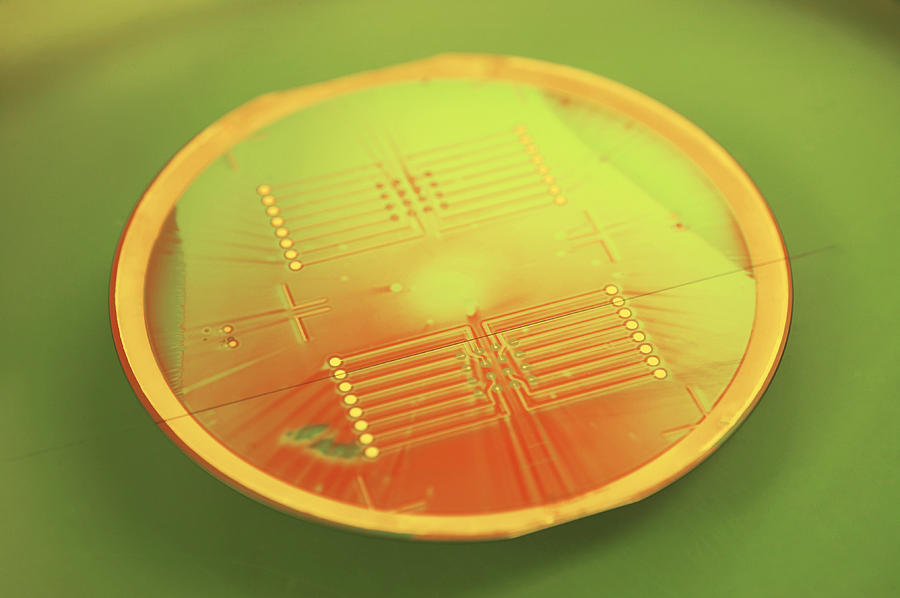 Wafer Photograph - Mems Production, Gold Metal Circuitry by Colin Cuthbert