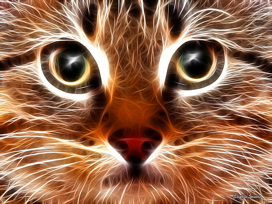 Cat Digital Art - Meow by Stephen Younts