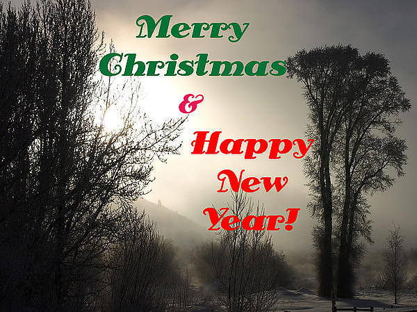 Christmas Cards Photograph - Merry Christmas And Happy New Year 2 by DeeLon Merritt
