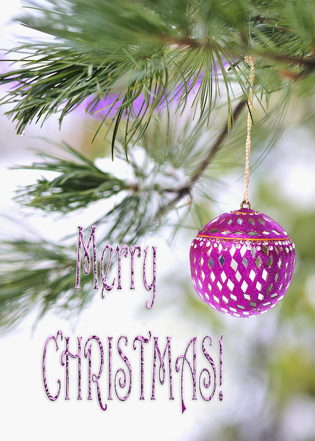 Merry Christmas Card With Pink Ornament On Snowy Pine Tree ...