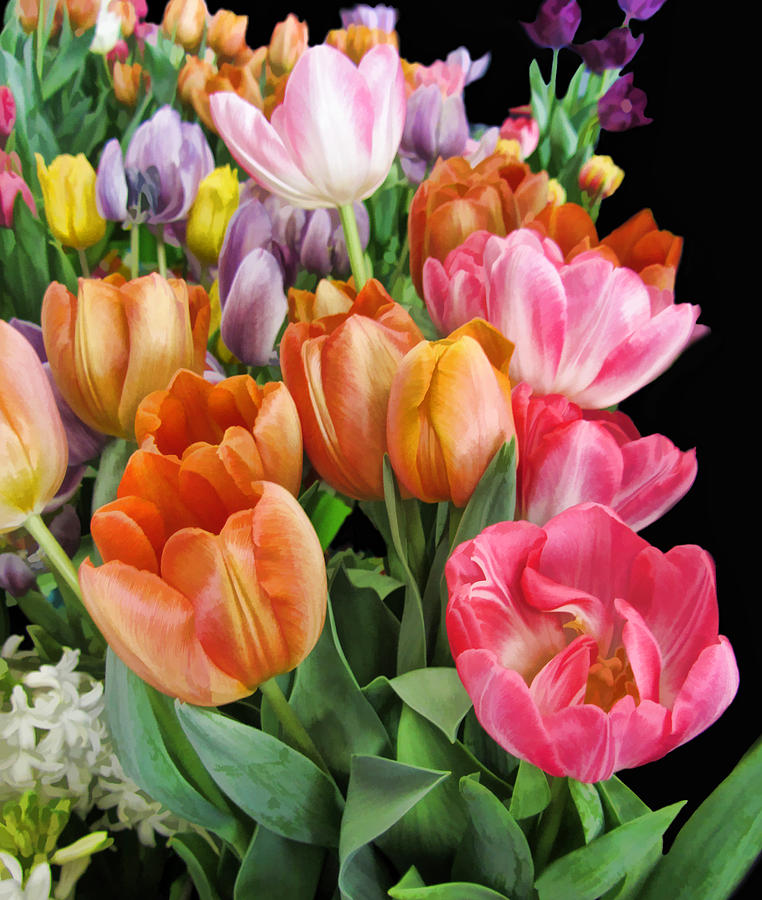 Tulips Photograph - Merry Dresden Style Tulips by Kathy Clark