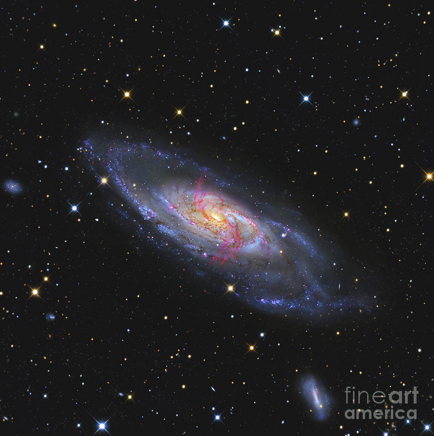 Night Photograph - Messier 106, A Spiral Galaxy With An by R Jay GaBany