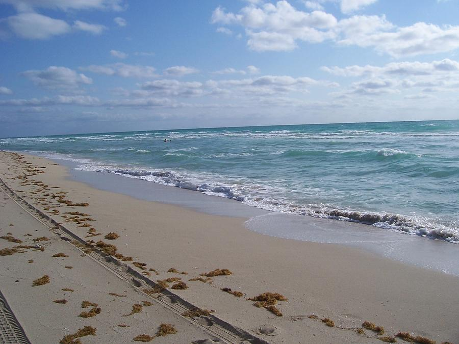 Beach Photograph - Miami In The Morning by Sheila Silverstein
