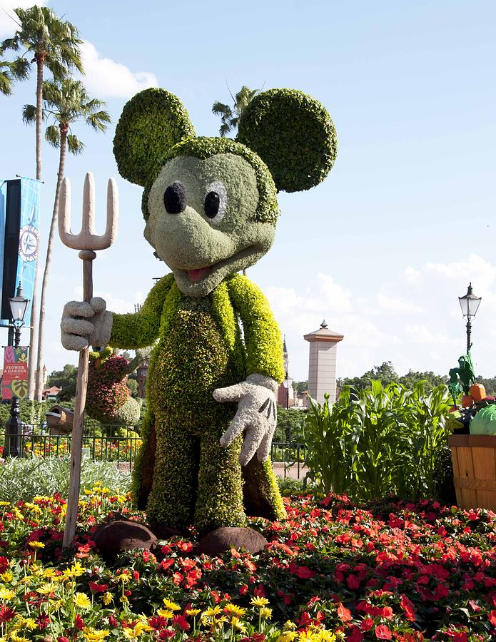 Mickey Mouse Photograph - MickeyTopiary3606 12 by Charles  Ridgway