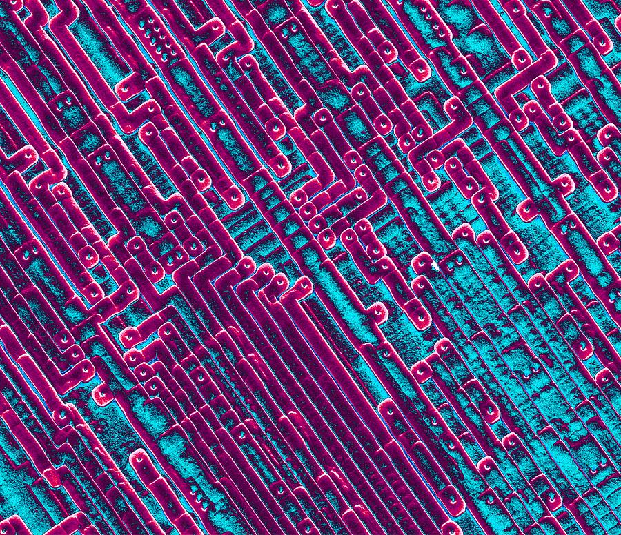Integrated Circuits Photograph - Microchip Circuitry, Sem by Power And Syred