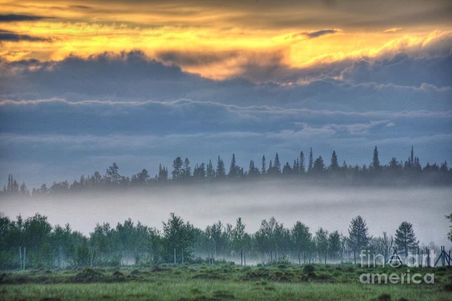 Hdr Photograph - Mid Summer Nights  Fog by Heiko Koehrer-Wagner