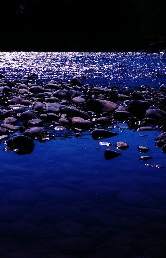 Yellowstone Photograph - Midnight Swim by Virginia Lei Jimenez