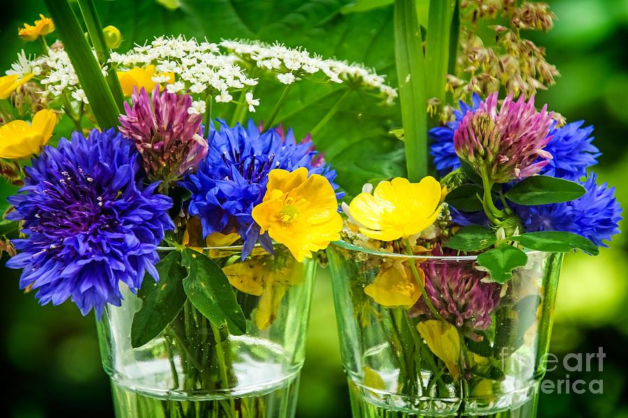 Midsummer Flowers Photograph By Lutz Baar