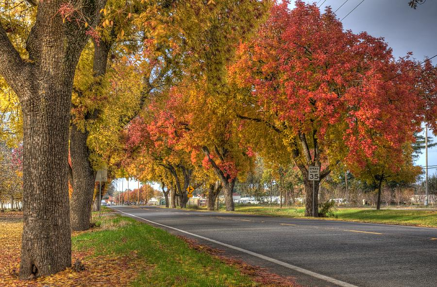 Fall Photograph - Midway by Ren Alber