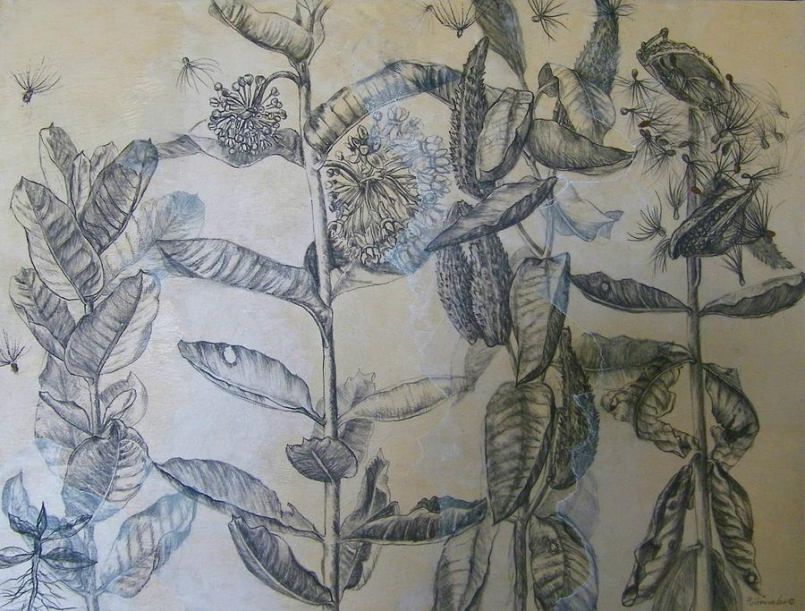 Milkweeds Painting - Milkweeds by Ruth Greenlaw