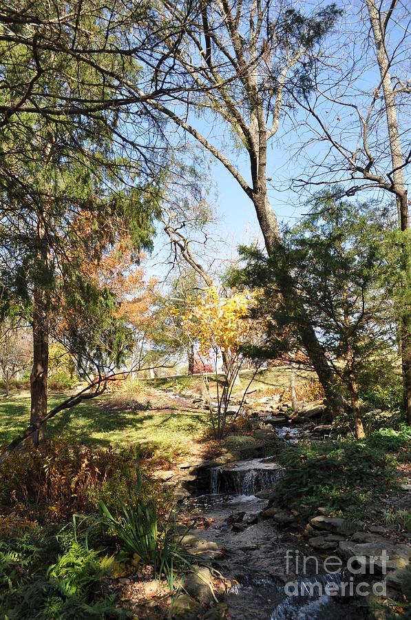 Cheekwood Gardens Photograph - Mini-waterfall by Denise Ellis
