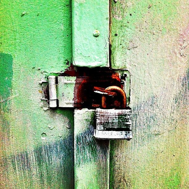 Mint Green Photograph - Mint  by Julie Gebhardt