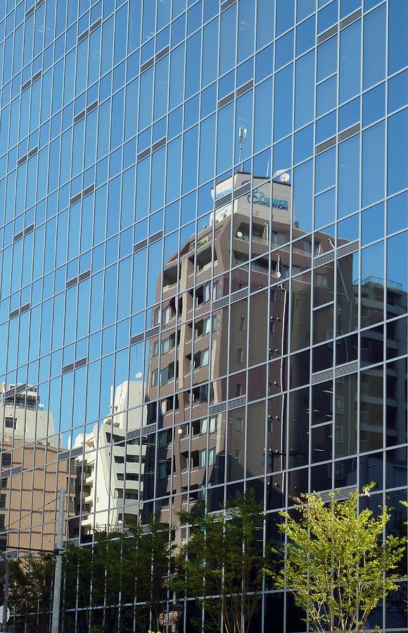 Mirror mirror Photograph by Baato